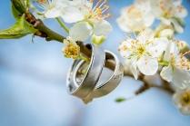 Hochzeit-346