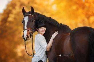 Pferdefotografie 3