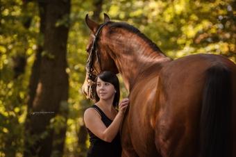Pferdefotografie 4