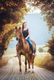 Pferdefotografie 9