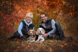 Beagle Familie