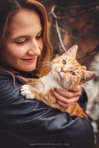Katzenfotoshooting