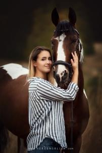 Pferd Portrait