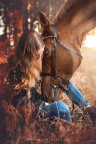 pferdefoto emotional